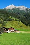 Chalé e prados alpinos fotos de stock