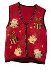 Chaleco de la Navidad Foto de archivo libre de regalías