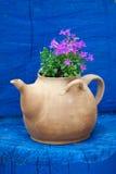 Chaleira com flores Foto de Stock