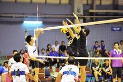 Chaleng de joueurs de volleyball d'hommes Image libre de droits