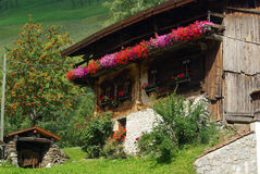 Chalet. Old chalet in Tyrol, Alps royalty free stock image