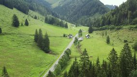Chalet in alps. Aerial view mountain and forest landscape of alps with chalet and road stock video footage