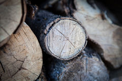 Chalet cercano de madera cosechado, Canadá Foto de archivo libre de regalías