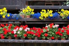 Chalet con las flores Imagen de archivo