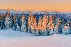 Chalet in de bergen stock afbeeldingen
