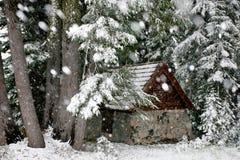 Chalet de ski Photo stock