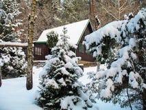 Chalet in de winter stock fotografie