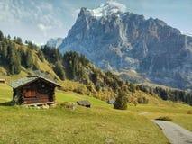 Chalet in de Zwitserse Alpen stock foto