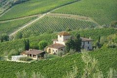 Chalet del campo en viñedos Imagenes de archivo