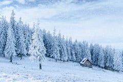 Chalet in den Bergen Karpaten, Ukraine, Europa Bokeh-ligh lizenzfreie stockfotografie