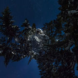 360 chalet e snowboard di panorama nella foresta di inverno sotto una stella Immagini Stock