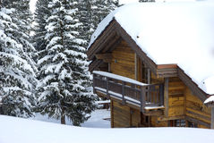 Chalet in the forest Stock Photography
