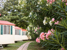 Chalet house in garden. Stock Photography