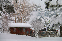 Chalet i vintern - Abant - Bolu - Turkiet Arkivfoto