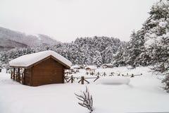 Chalet i vintern - Abant - Bolu - Turkiet Arkivbild