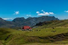Chalet reale nel parco nazionale dell'europa di Picos da Fotografia Stock Libera da Diritti
