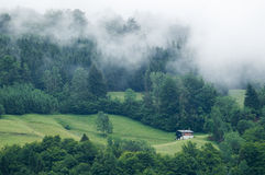 Chalet Surrounded by Trees Stock Photo