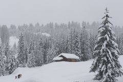 Chalet in Val di Fassa royalty-vrije stock foto's