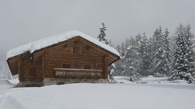 Chalet in Val di Fassa Royalty Free Stock Photos