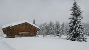 Chalet in Val di Fassa. Chalet and trees under the snow in the idyllic landscape of the dolomiti in Val di Fassa Royalty Free Stock Images