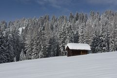 Chalet in Val di Fassa Royalty Free Stock Photo