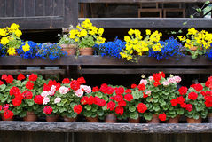 Chalet With Flowers Stock Image