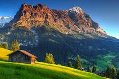 Chalets alpins en bois typiques, visage du nord d'Eiger, Grindelwald, Suisse, l'Europe Image stock