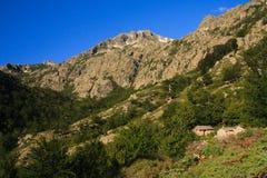 Chalets de montagne Photo libre de droits