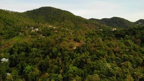 Chalets en canto verde de la monta?a Opini?n majestuosa del abej?n de los chalets de lujo establecidos en cordillera verde en tro almacen de video