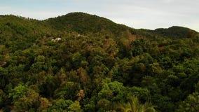 Chalets en canto verde de la monta?a Opini?n majestuosa del abej?n de los chalets de lujo establecidos en cordillera verde en tro almacen de metraje de vídeo