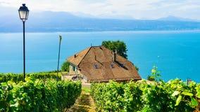 Chalets im Weinberg-Terrassenwanderweg von Lavaux von Switzerlan Lizenzfreie Stockfotos