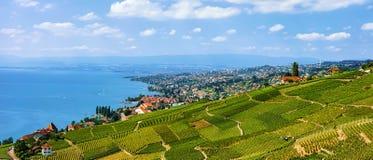 Chalets nahe Lavaux-Weinberg-Terrassenwanderweg von der Schweiz Stockfotografie