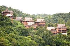Chalets in the Tropical Rainforest.  Stock Image