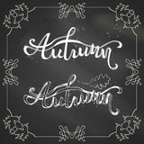 Chalk autumn background. Stock Image
