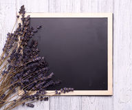 Chalk board with branches seal Stock Photo