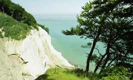 Chalk-cliff 1. A chalk-cliff on the island Moen in Denmark Stock Image