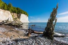 Chalk cliff on the island Ruegen Royalty Free Stock Photo