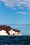 Chalk cliff on the isle of Ruegen,Germany. Chalk cliff on the isle of Ruegen Royalty Free Stock Photography