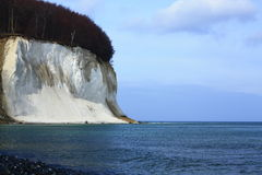 Chalk cliffs of the Baltic Sea. The chalk cliffs of Ruegen, Baltic Sea, Mecklenburg-Western Pomerania, Germany Stock Photography