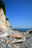 Chalk cliffs and coastline of the island of Ruegen in the Baltic Sea Royalty Free Stock Photo