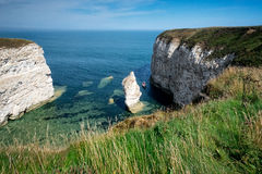 Chalk cliffs Royalty Free Stock Photo