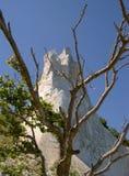 Chalk cliffs of Møn. Island of Møn, Denmark 2005 Royalty Free Stock Photo
