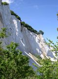 Chalk cliffs of Møn Stock Image