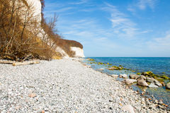 Chalk cliffs of Rügen Island Stock Photography