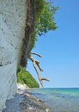 Chalk Cliffs,Ruegen island,Baltic Sea,Germany Royalty Free Stock Photo