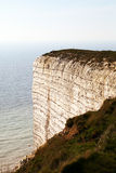 Chalk cliffs. Stock Images