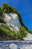 Chalk cliffs Royalty Free Stock Photos