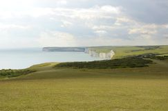 Chalk Cliffs in Sussex. England Royalty Free Stock Photo