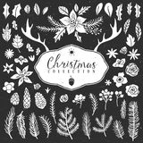 Chalk decorative plant items. Christmas collection. Stock Images