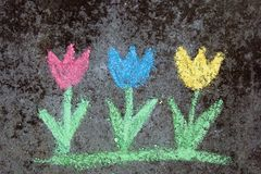 Chalk drawing on asphalt: colorful tulips. Copy space Stock Photos